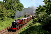 LMS Red 8F 48624 passes through Beeches Road Cutting, Loughborough on 8.6.14 with 1000 Loughborough - Leicester North GCR service in lovely morning sunshine